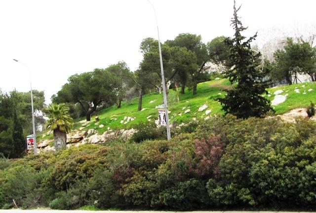 Jerusalem marathon route image