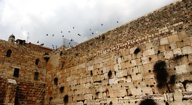 """picture Wailing Wall"",""photo Jerusalem"", ""image birds"""