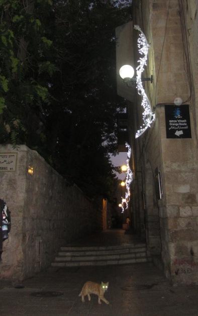 """picture Jerusalem"", ""photo light festival"", ""image lights"""