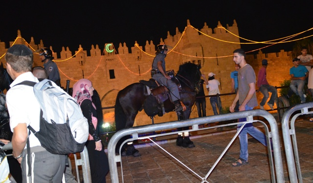 """photo Damascus Gate""., ""image horse"", ""security Jerusalem"""