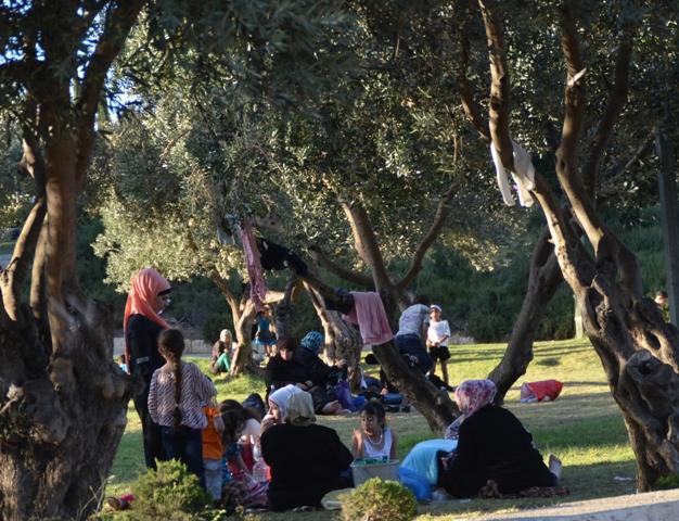 Jerusalem park