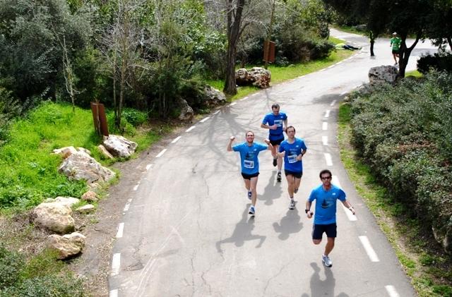 marathon runners image